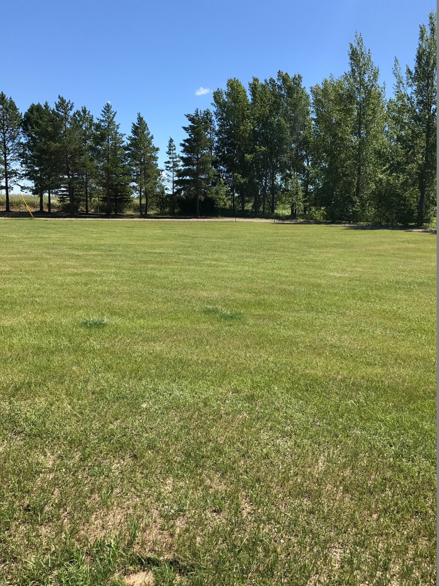 Reduced Price !!! 116 Wheatland Court, Rosthern ($40,000)